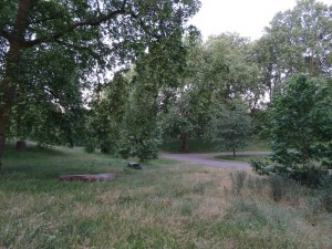 Senke im Green Park London